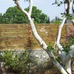 גדר אלומיניום דמוי עץ